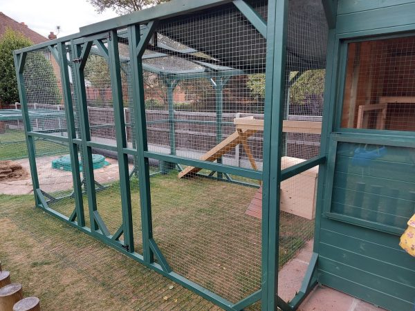 HIGH QUALITY SPACIOUS FREEDOM RABBIT SHED RWAF RECOMMENDED SIZE