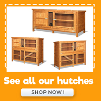 See All our Hutches
