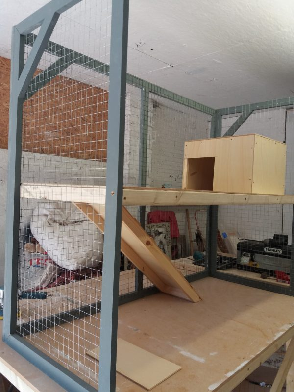 inside view of this 2 TIER INDOOR RABBIT OR GUINEA PIG HOUSE