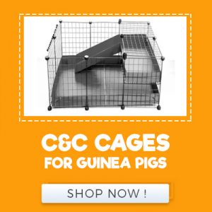 C&C CAGES FOR GUINEA PIGS
