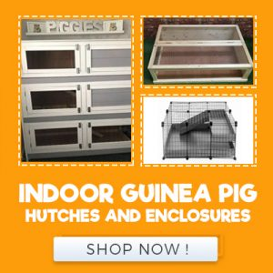 INDOOR GUINEA PIG HUTCHES AND ENCLOSURES