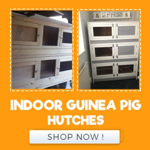 INDOOR GUINEA PIG HUTCHES