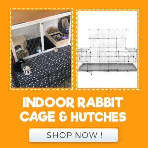 INDOOR RABBIT CAGE AND HUTCHES