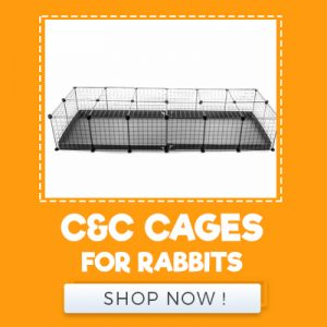 C&C CAGES FOR RABBITS