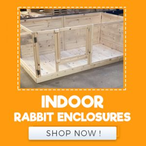 INDOOR RABBIT ENCLOSURES
