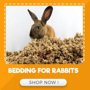 BEDDING FOR RABBITS