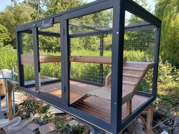 OUTDOOR ENCLOSURES FOR SMALL BREED RABBITS