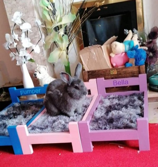 HANDCRAFTED BEDS FOR RABBITS