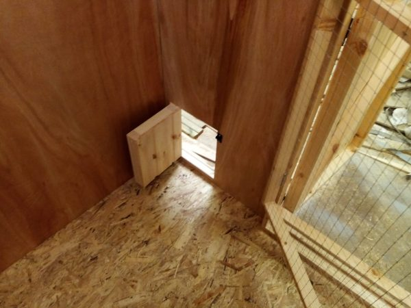 Large Rabbit shed with leading outside door