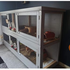 2 TIER INDOOR GUINEA PIG ENCLOSURE