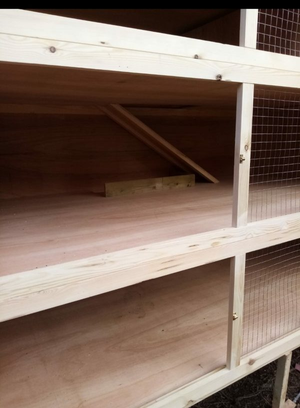 EXTRA LARGE 3 TIER INDOOR GUINEA PIG HUTCH INSIDE VIEW