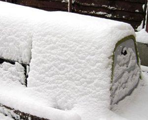 Keep Rabbits Warm in Winter